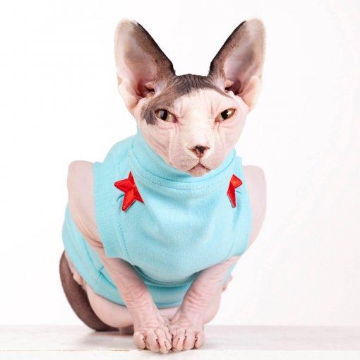 sphynx-cat-clothes-FleeceRockStar_7695-sphynx-cat-wear