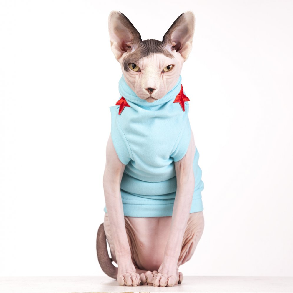 sphynx-cat-clothes-FleeceRockStar_7706-sphynx-cat-wear
