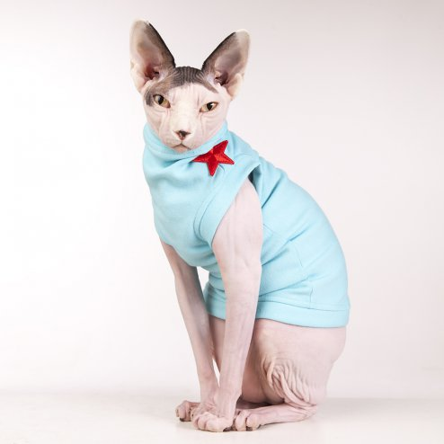 sphynx-cat-clothes-FleeceRockStar_7738-sphynx-cat-wear