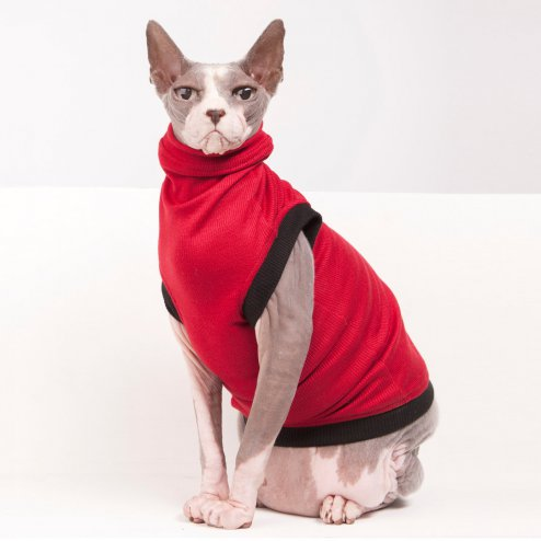 sphynx-cat-clothes-beatnik-red-sphynx-cat-wear-0931