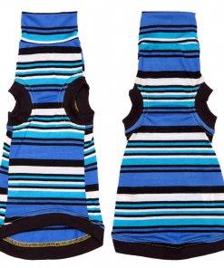 sphynx-cat-clothes-bluey-sphynx-cat-wear