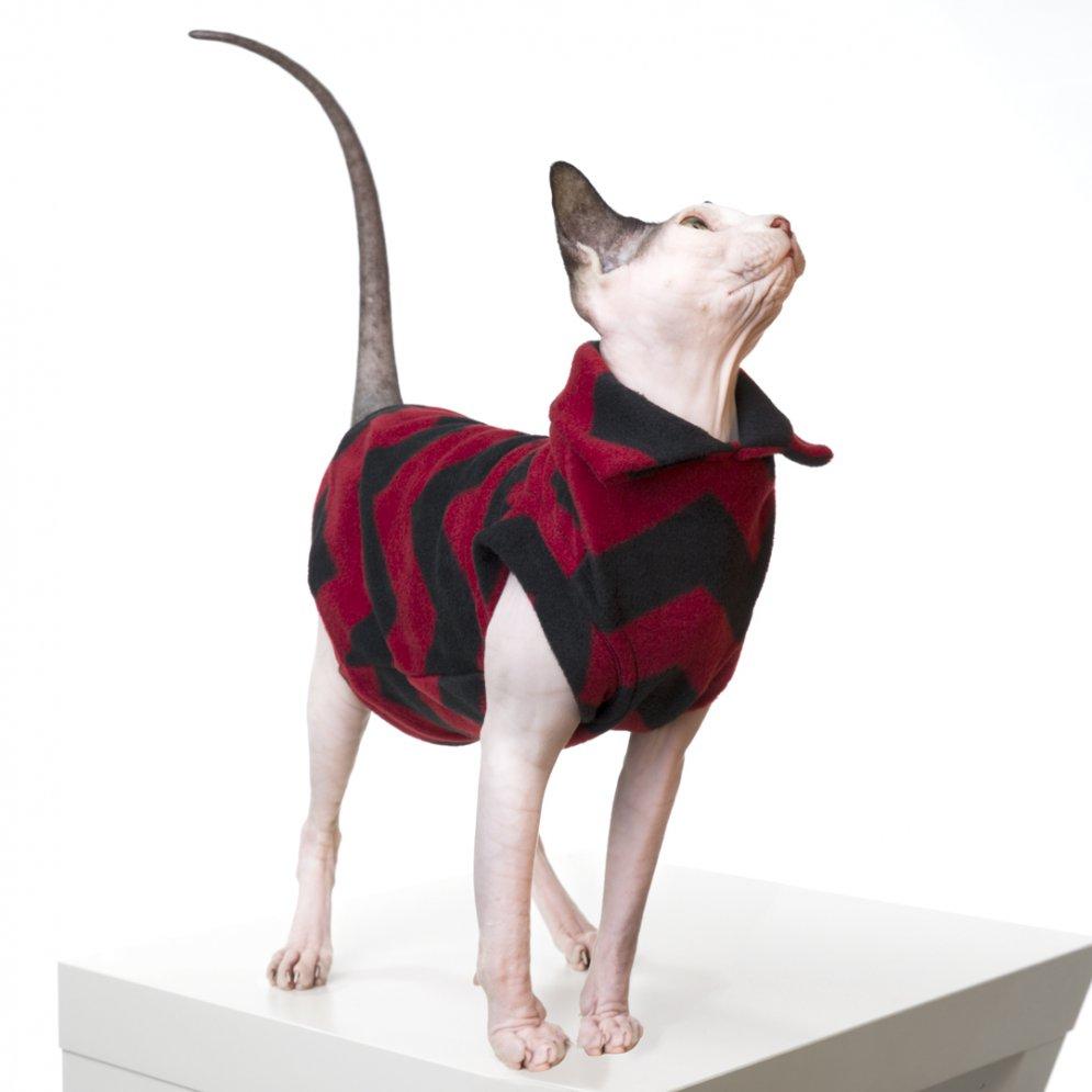 sphynx-cat-clothes-Jughead_143-sphynx-cat-wear