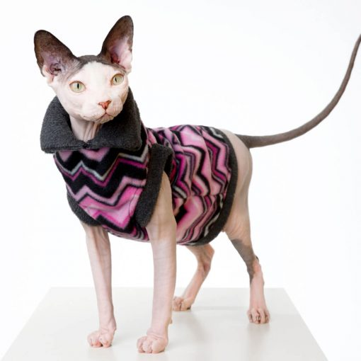 sphynx-cat-clothes-PinkChevron_092-sphynx-cat-wear