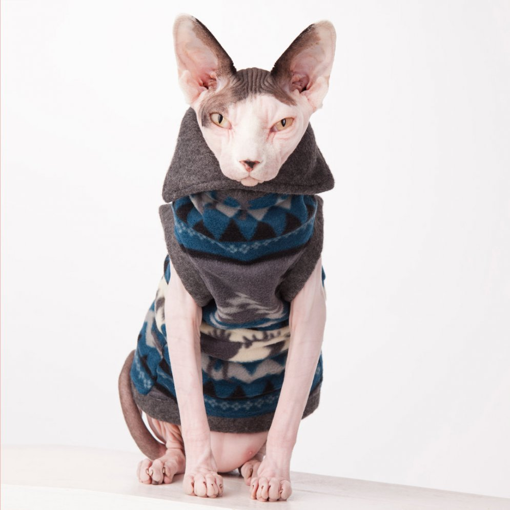 sphynx-cat-clothes-polar-fleece-northern-exposure-sphynx-cat-wear-2654