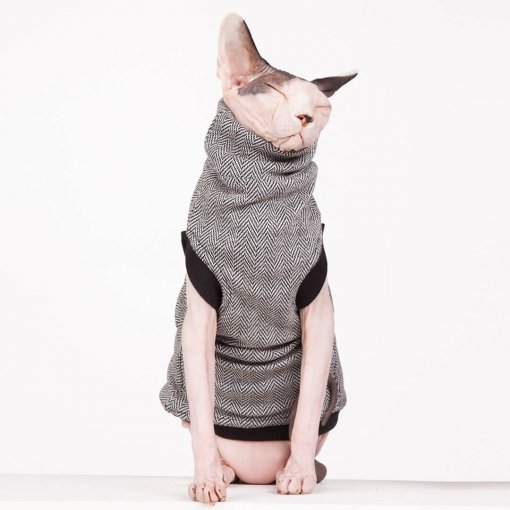 sphynx-cat-clothes-CEO-sphynx-cat-wear-_0787