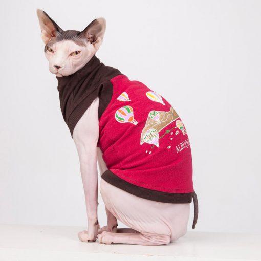 sphynx-cat-clothes-Alberquerque_6130-sphynx-cat-wear