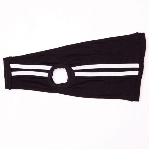 sphynx-cat-clothes-BlackTrack_0649-sphynx-cat-wear