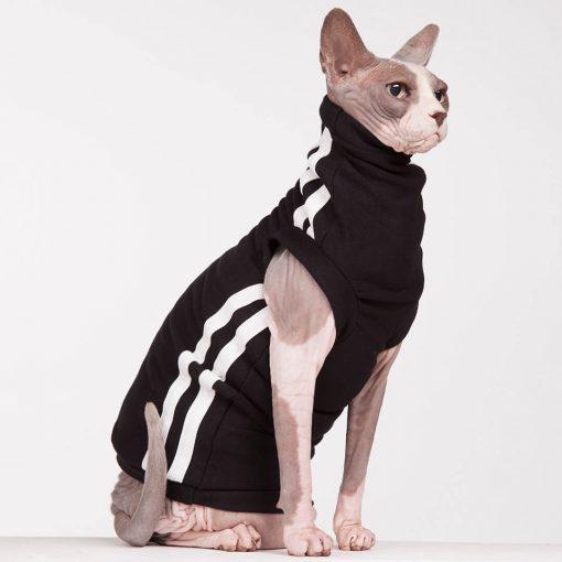 sphynx-cat-clothes-BlackTrack_0829-sphynx-cat-wear