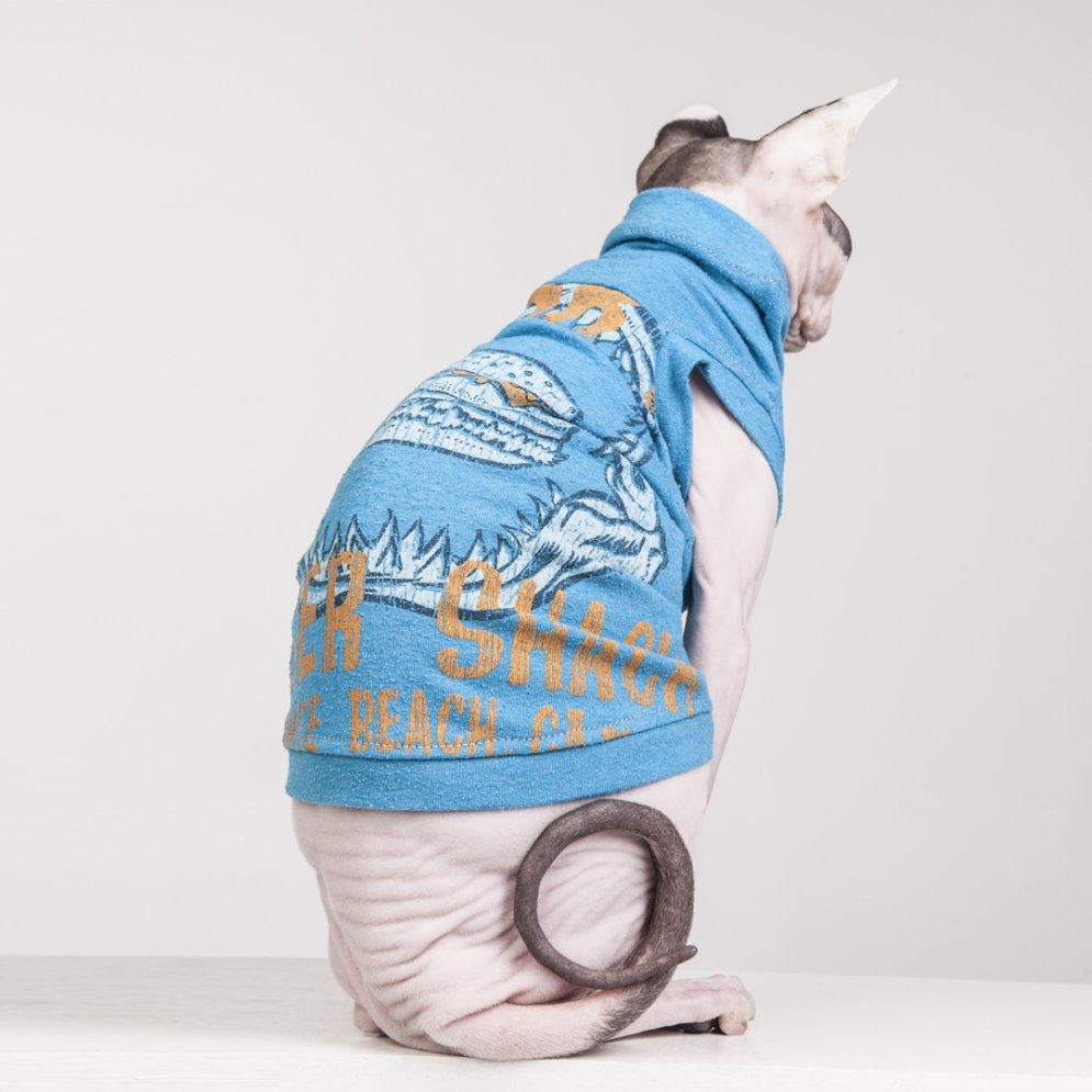 sphynx-cat-clothes-BurgerShackVeniceBeach_6003-sphynx-cat-wear