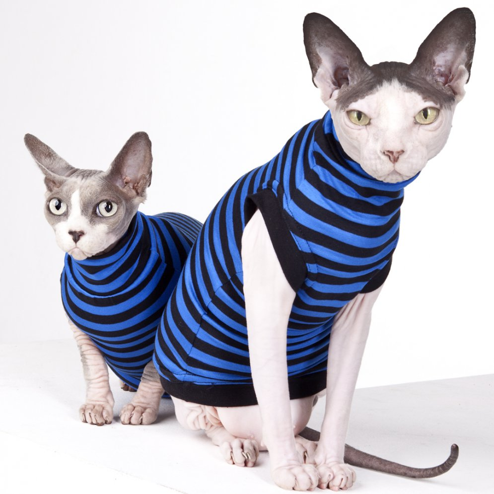 sphynx-cat-clothes-Cossie-sphynx-cat-wear