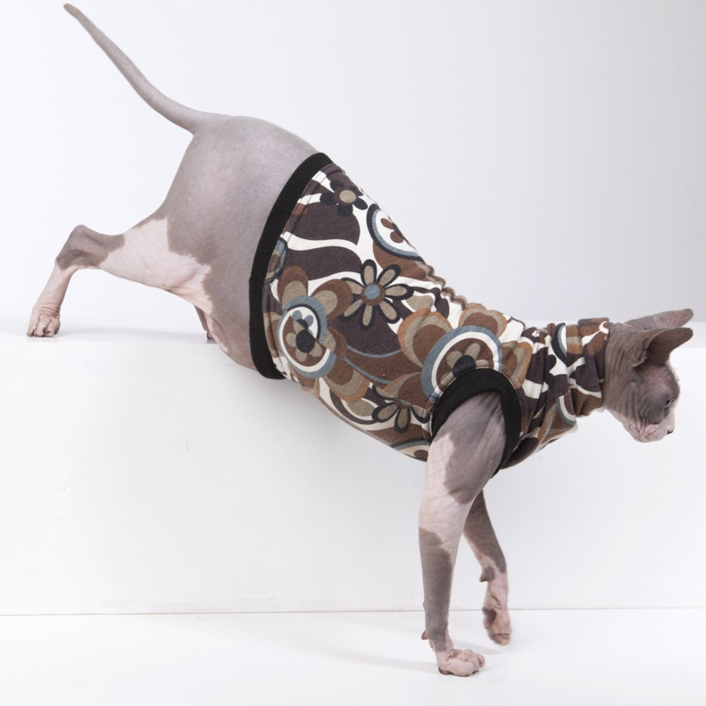 sphynx-cat-clothes-Funkadelic_5607-sphynx-cat-wear