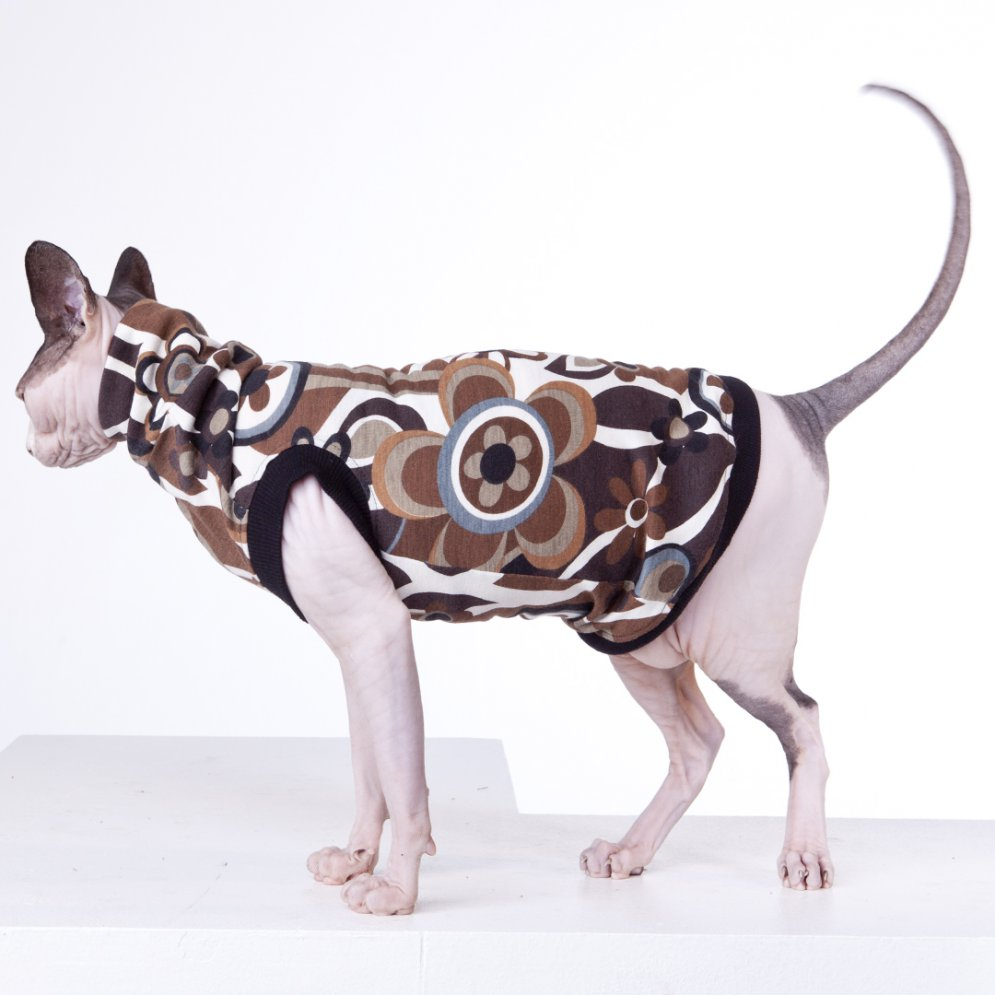 sphynx-cat-clothes-Funkadelic_9615-sphynx-cat-wear