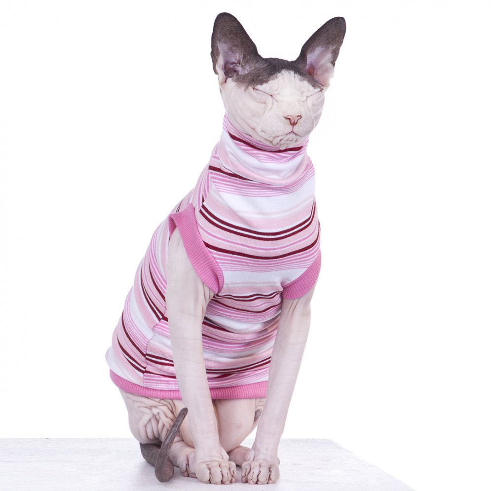 sphynx-cat-clothes-HardCandy_0041-sphynx-cat-wear
