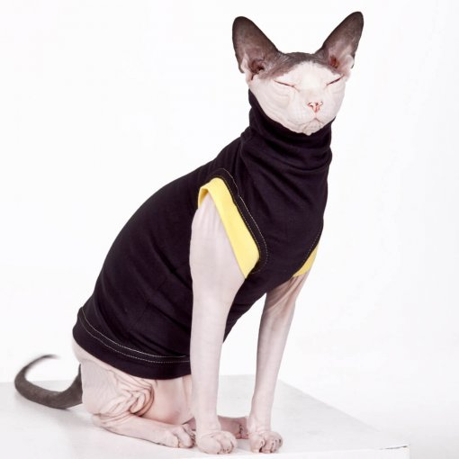 sphynx-cat-clothes-JF_BlkLemSKU02_9976b-sphynx-cat-wear