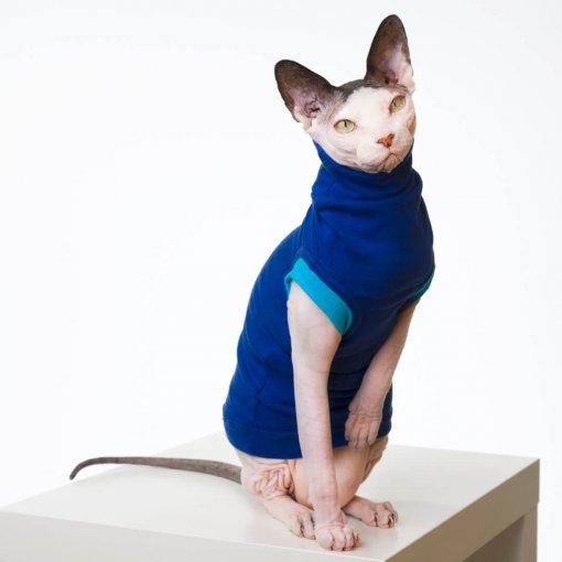 sphynx-cat-clothes-JF_BlueberryBluSKU15_515b-sphynx-cat-wear
