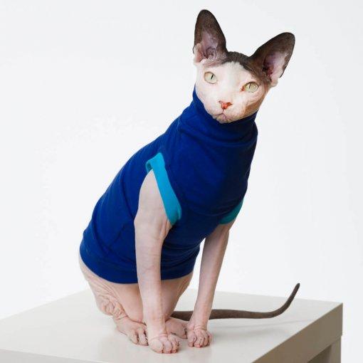 sphynx-cat-clothes-JF_BlueberryBluSKU15_536-sphynx-cat-wear