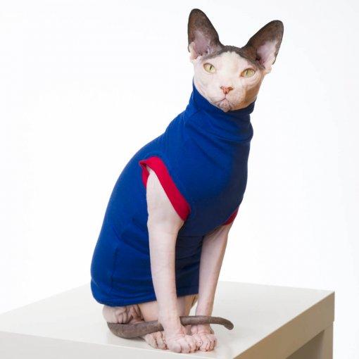 sphynx-cat-clothes-JF_BlueberryCherry_557b-sphynx-cat-wear