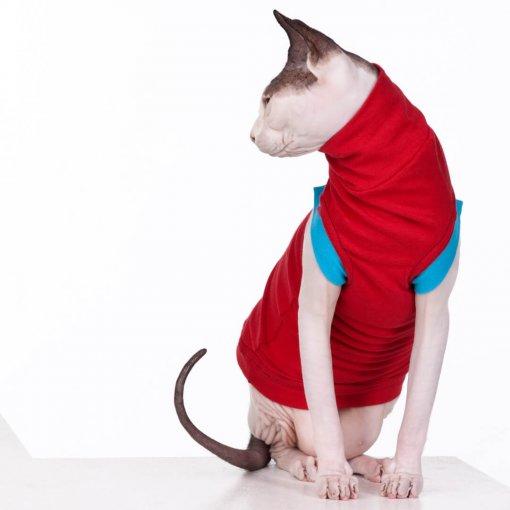 sphynx-cat-clothes-JF_CherryBlueSKU07_10061b-sphynx-cat-wear