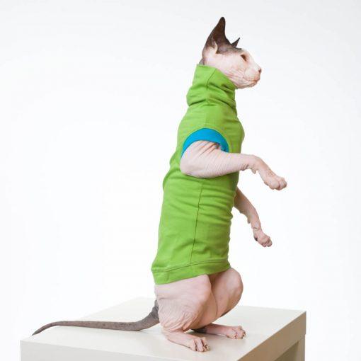 sphynx-cat-clothes-JF_LimeBlueSKU13_347b-sphynx-cat-wear