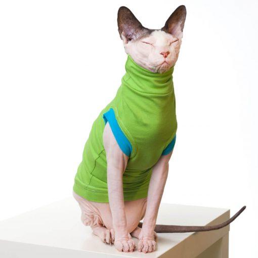 sphynx-cat-clothes-JF_LimeBlueSKU13_354b-sphynx-cat-wear