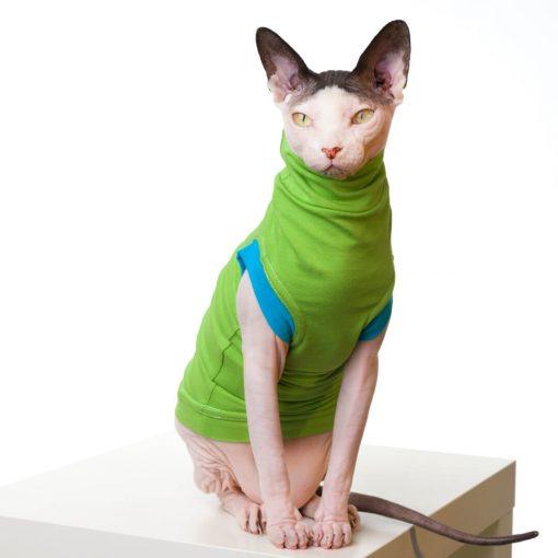 sphynx-cat-clothes-JF_LimeBlueSKU13_357b-sphynx-cat-wear