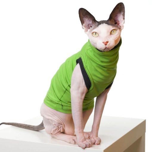 sphynx-cat-clothes-JF_LimeGreySKU14_337b-sphynx-cat-wear