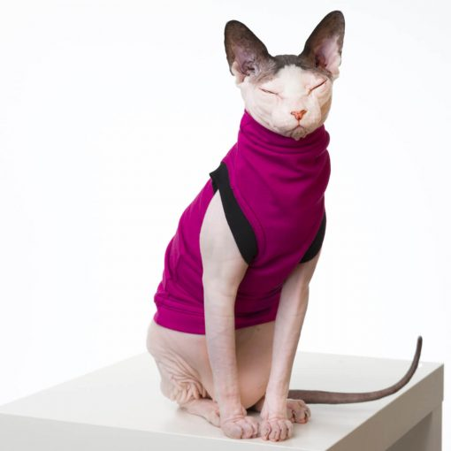 sphynx-cat-clothes-JF_RassBlkSKU16_294b-sphynx-cat-wear