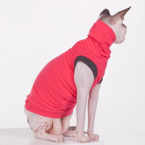 sphynx-cat-clothes-JF_WatermelonBlack_10007-2-sphynx-cat-wear