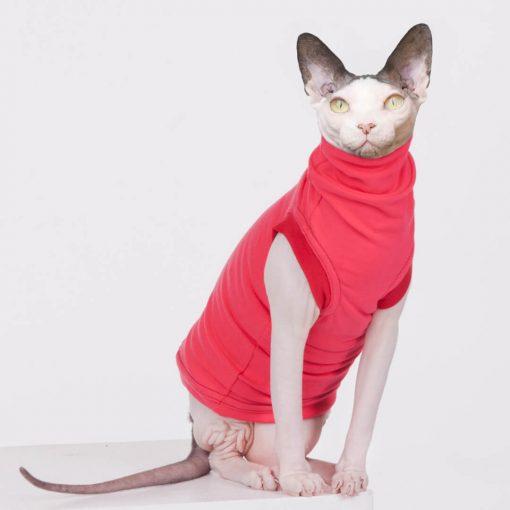 sphynx-cat-clothes-JF_WatermelonCherry_10019-sphynx-cat-wear