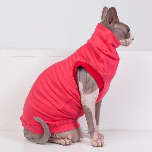 sphynx-cat-clothes-JF_WatermelonCherry_5715-sphynx-cat-wear