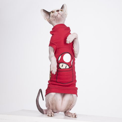 sphynx-cat-clothes-MarioBros-sphynx-cat-wear