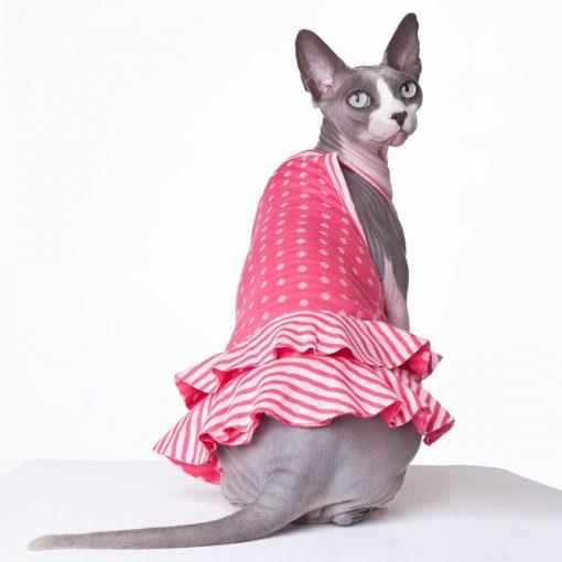 sphynx-cat-clothes-PinkLemonade-sphynx-cat-wear