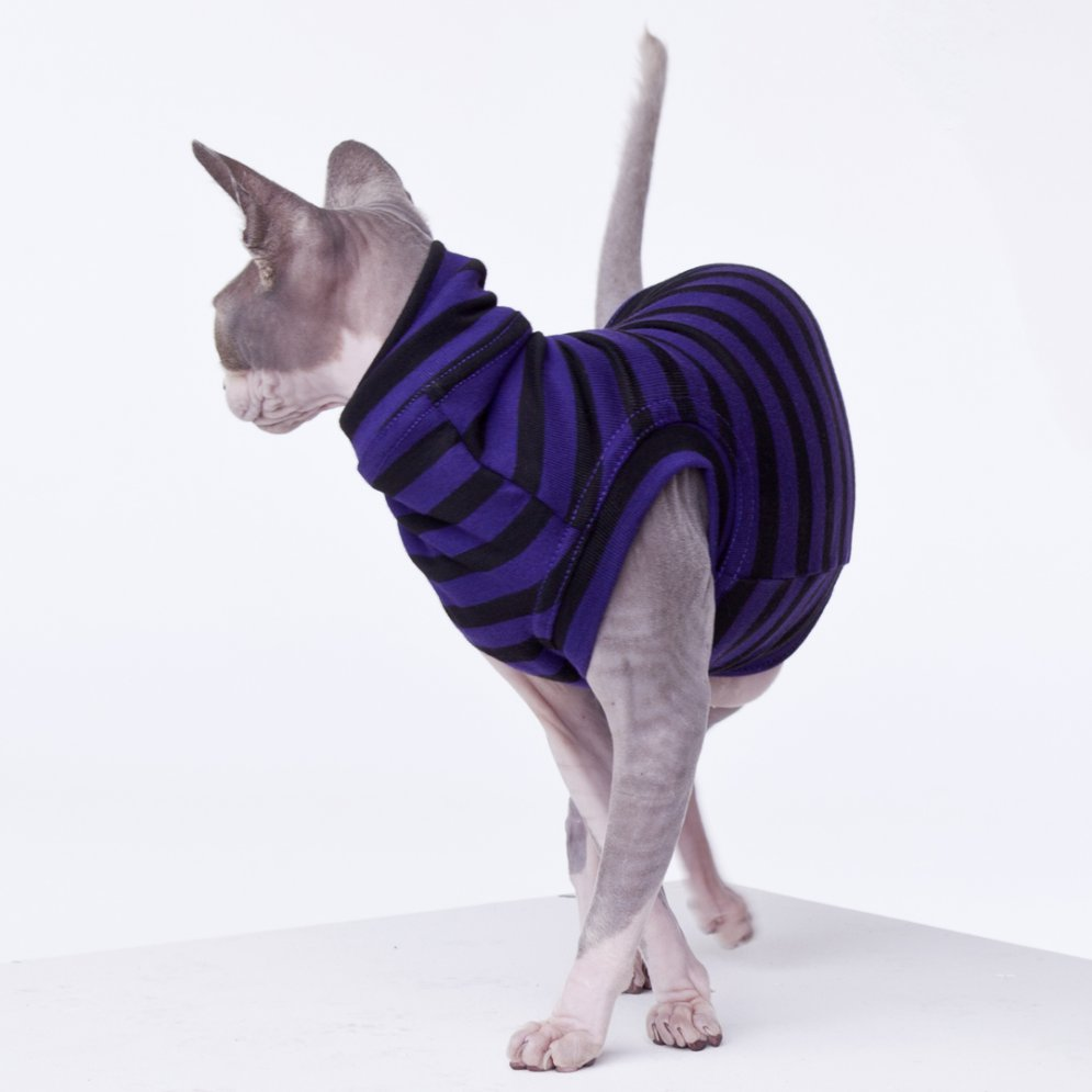 sphynx-cat-clothes-PurplePeopleEaterWatozzy-sphynx-cat-wear
