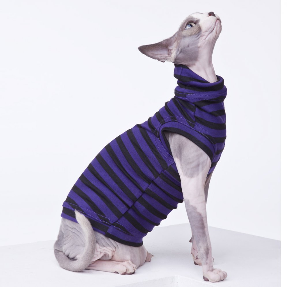 sphynx-cat-clothes-purplepeopleeaterzizz-sphynx-cat-wear