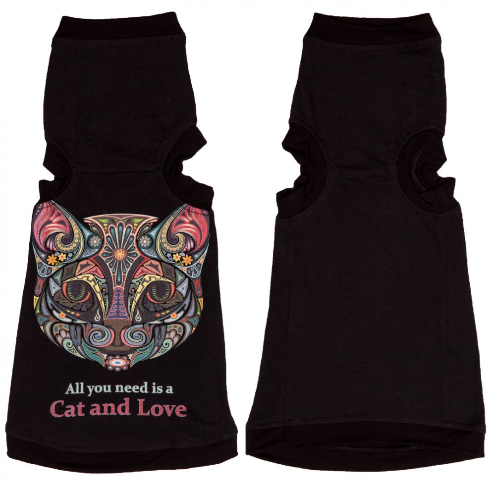 sphynx-cat-clothes-All-You-Need-sphynx-cat-wear