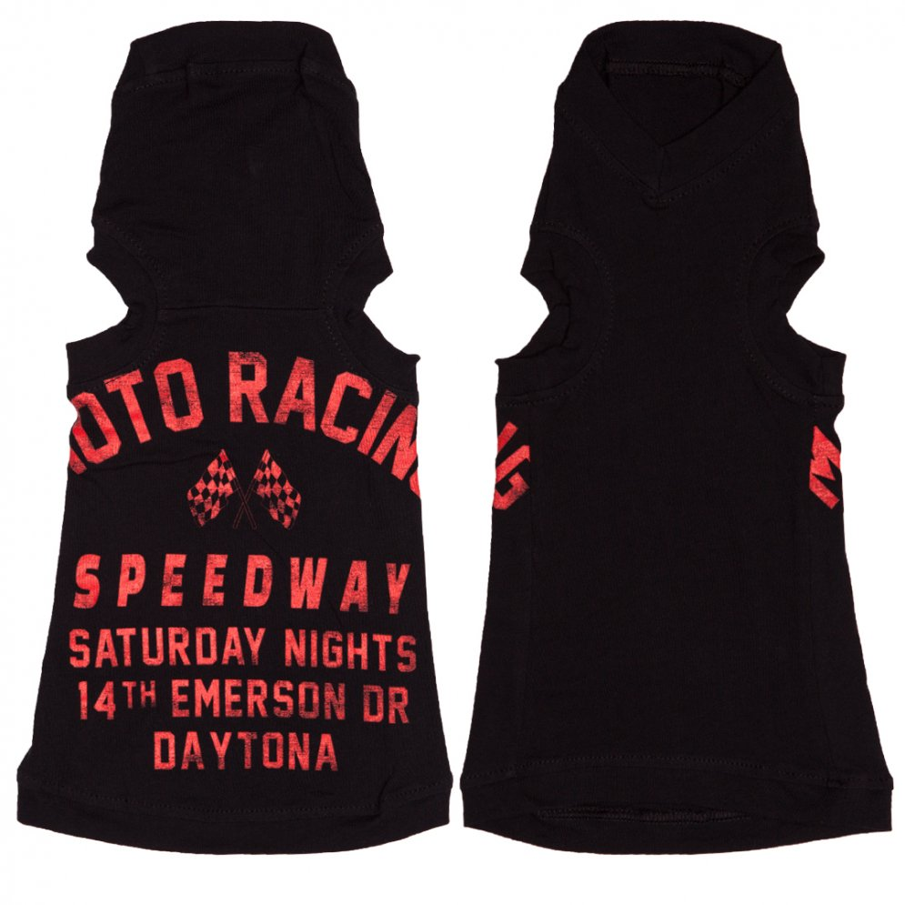 sphynx-cat-clothes-Daytona-Motor-Racing-sphynx-cat-wear