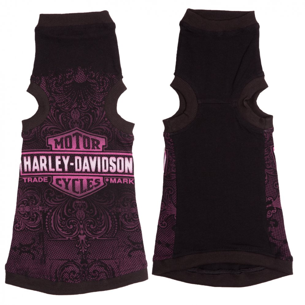 sphynx-cat-clothes-Harley-Davidson-sphynx-cat-wear