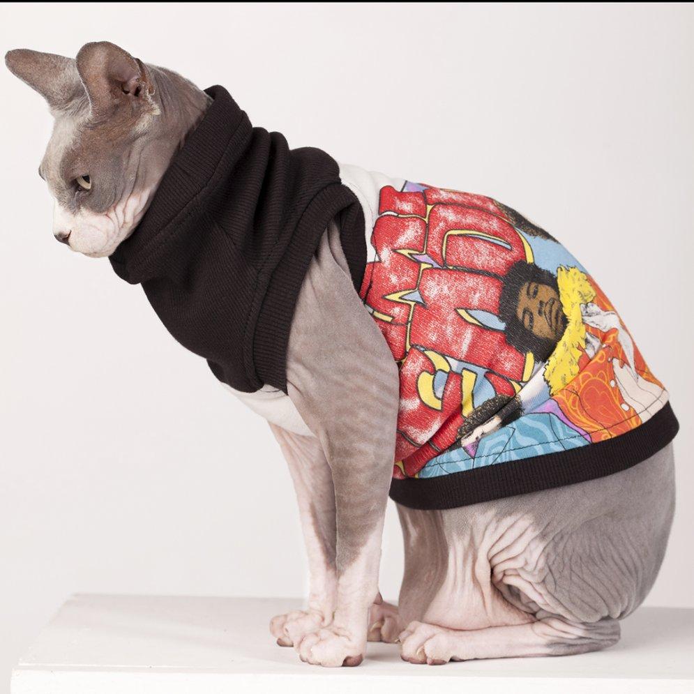 sphynx-cat-clothes-Jimi-Hendrix-4073-sphynx-cat-wear