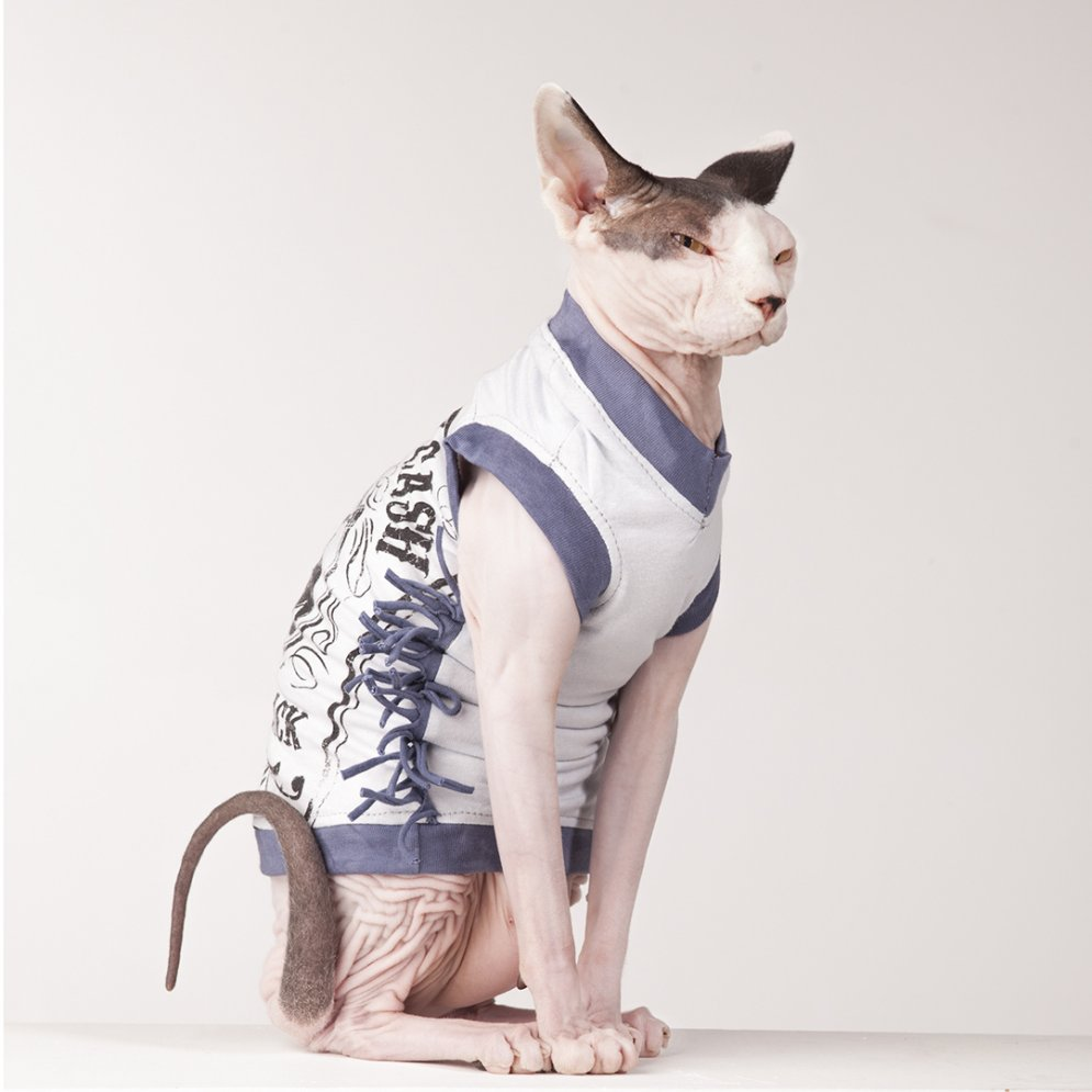 sphynx-cat-clothes-Johnny-Cash-2-sphynx-cat-wear