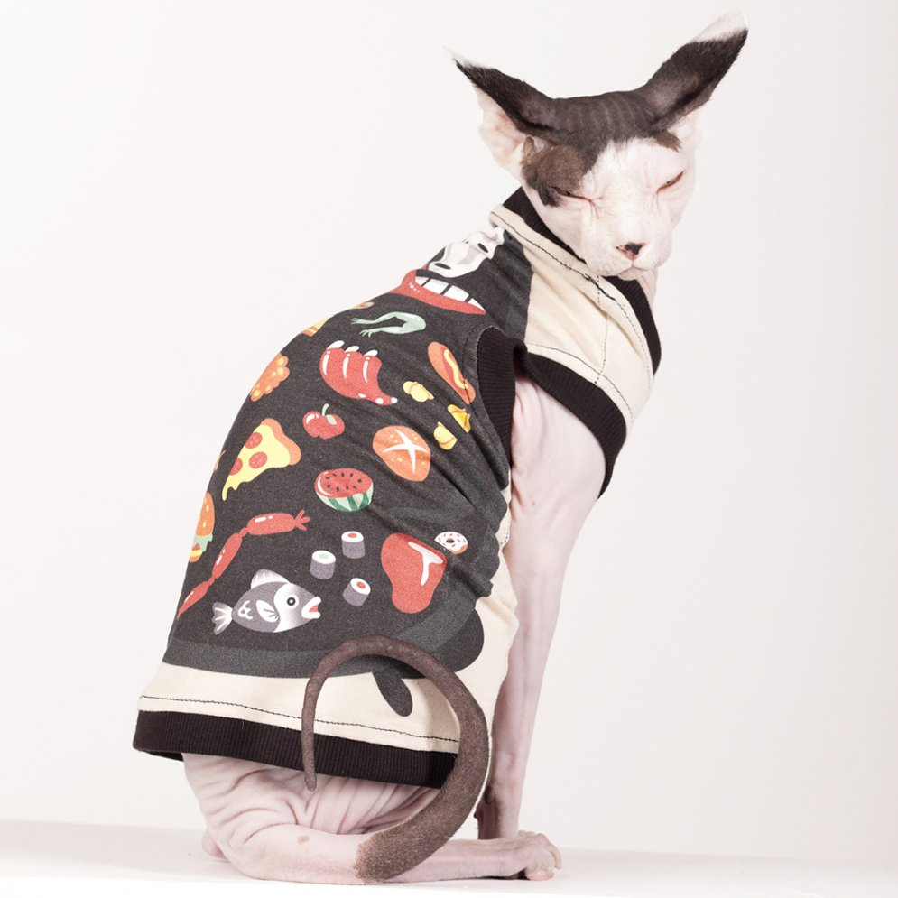 sphynx-cat-clothes-Lunchbox-4012-sphynx-cat-wear