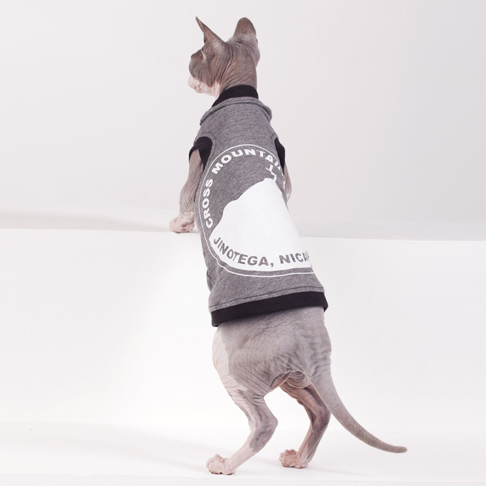 sphynx-cat-clothes-Mission-4107-sphynx-cat-wear