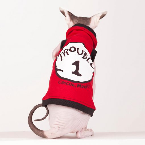 sphynx-cat-clothes-Trouble-4021-sphynx-cat-wear