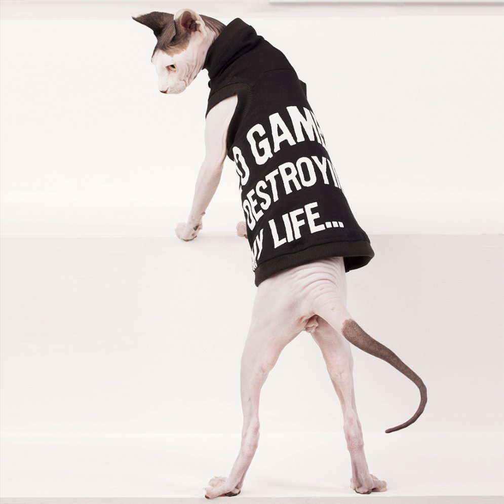 sphynx-cat-clothes-Video-Games-3880-sphynx-cat-wear