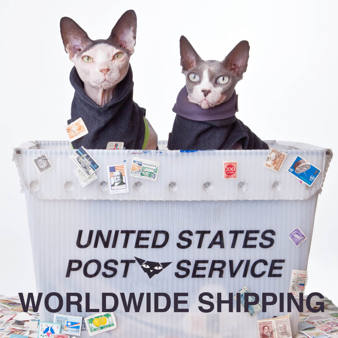 sphynx-cat-clothes-home-shipping-sphynx-cat-wear