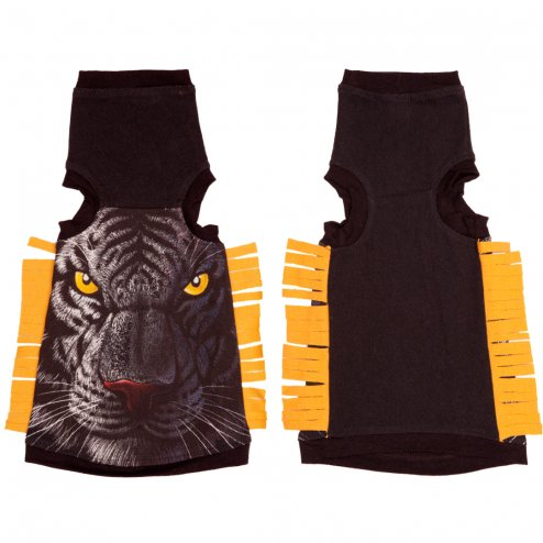sphynx-cat-clothes-Yellow-Eyes-sphynx-cat-wear