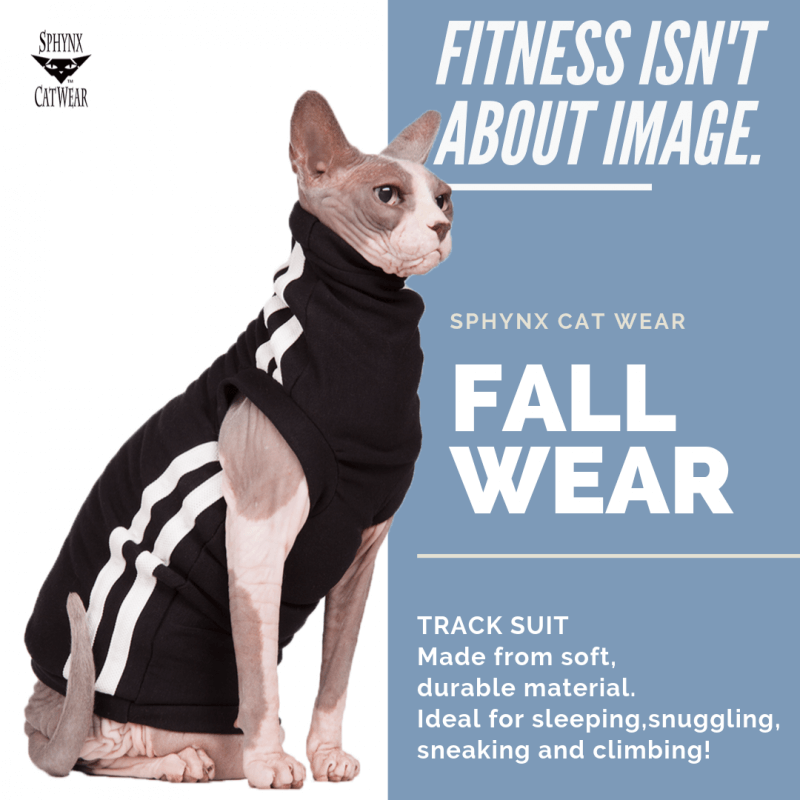 sphynx-cat-clothes-home-track-suit-sphynx-cat-wear