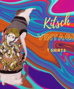 sphynx-cat-clothes-Ganesh-3983-sphynx-cat-wear