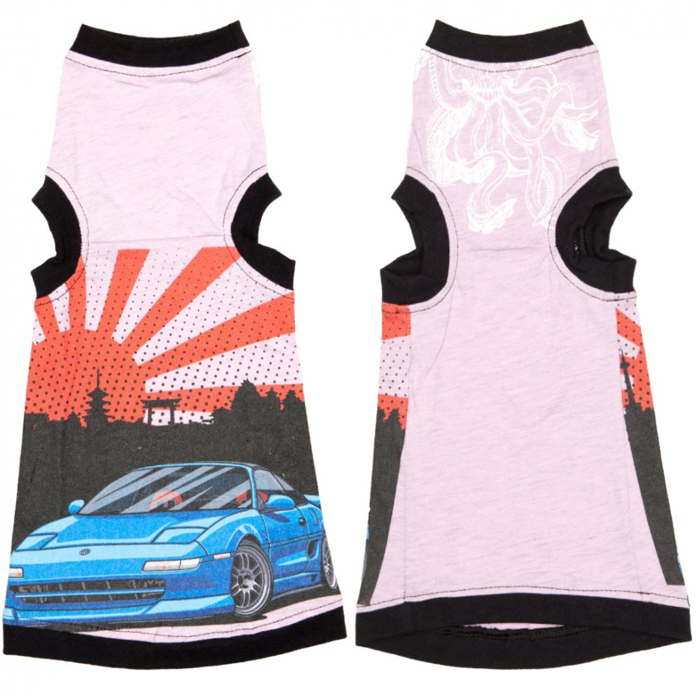 sphynx-cat-clothes-japanese-sports-car-sphynx-cat-wear