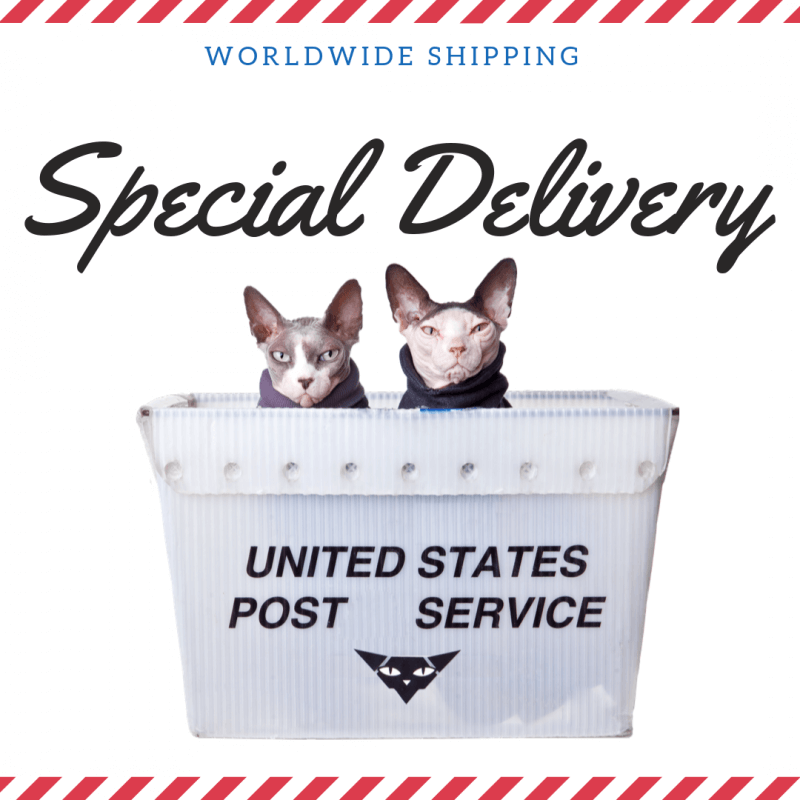 sphynx-cat-clothes-home-worldwide-shipping-sphynx-cat-wear