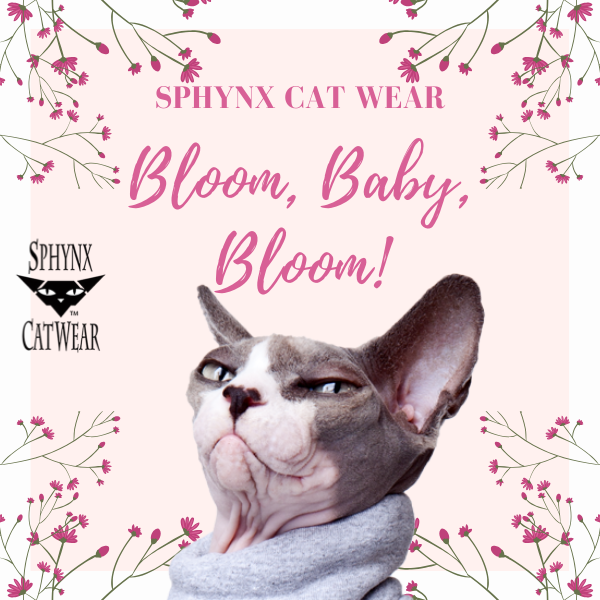sphynx-cat-clothes-home-bloom-sphynx-cat-wear